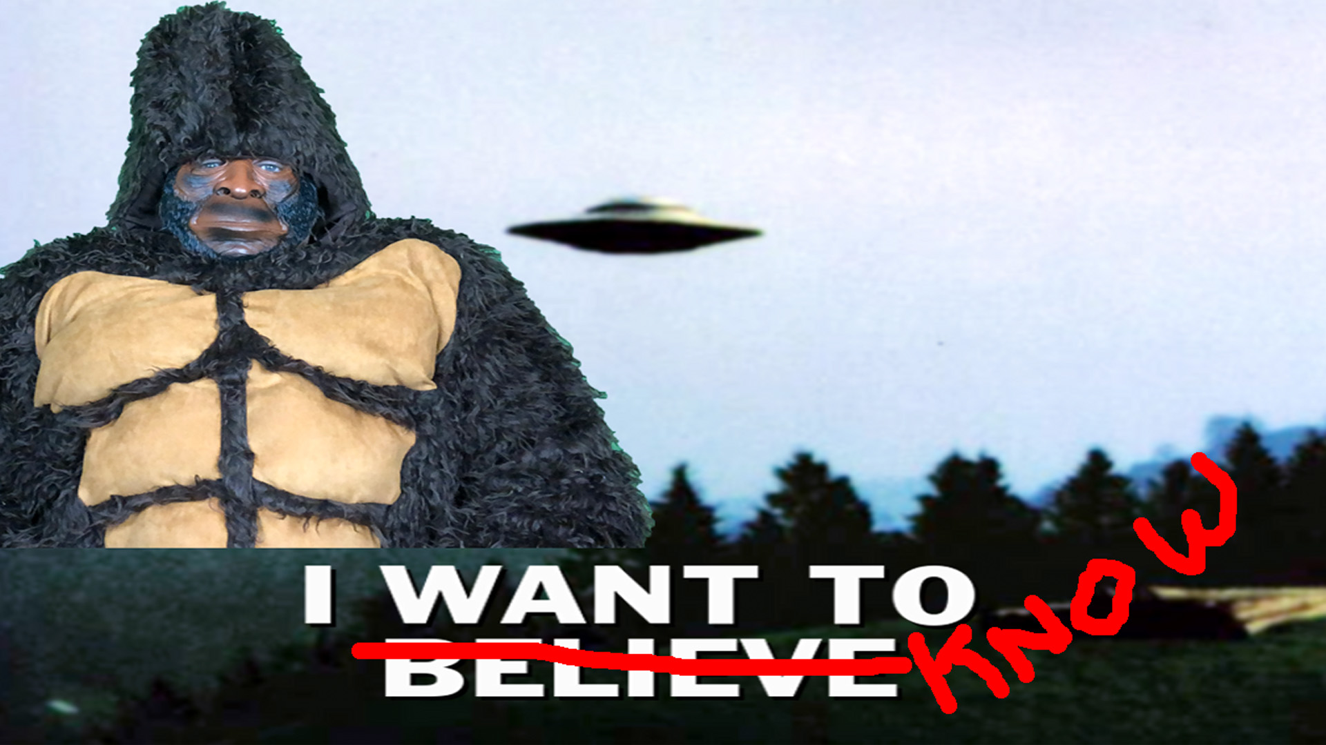 Do You Believe? Are Bigfoot and Aliens the New Religion?