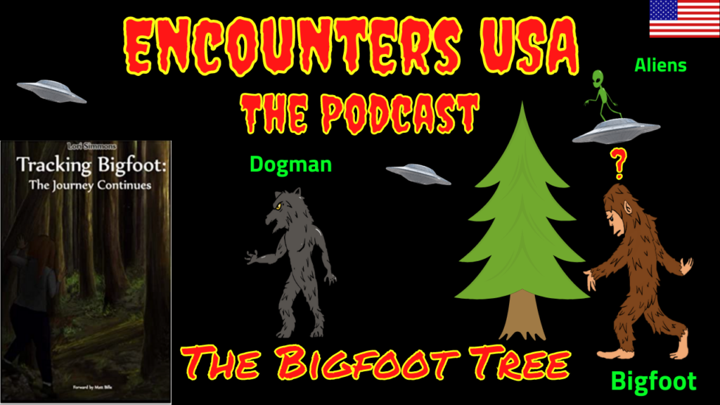 Bigfoot Tree Updates Are They Really Just Cold Feet & Old Info SM