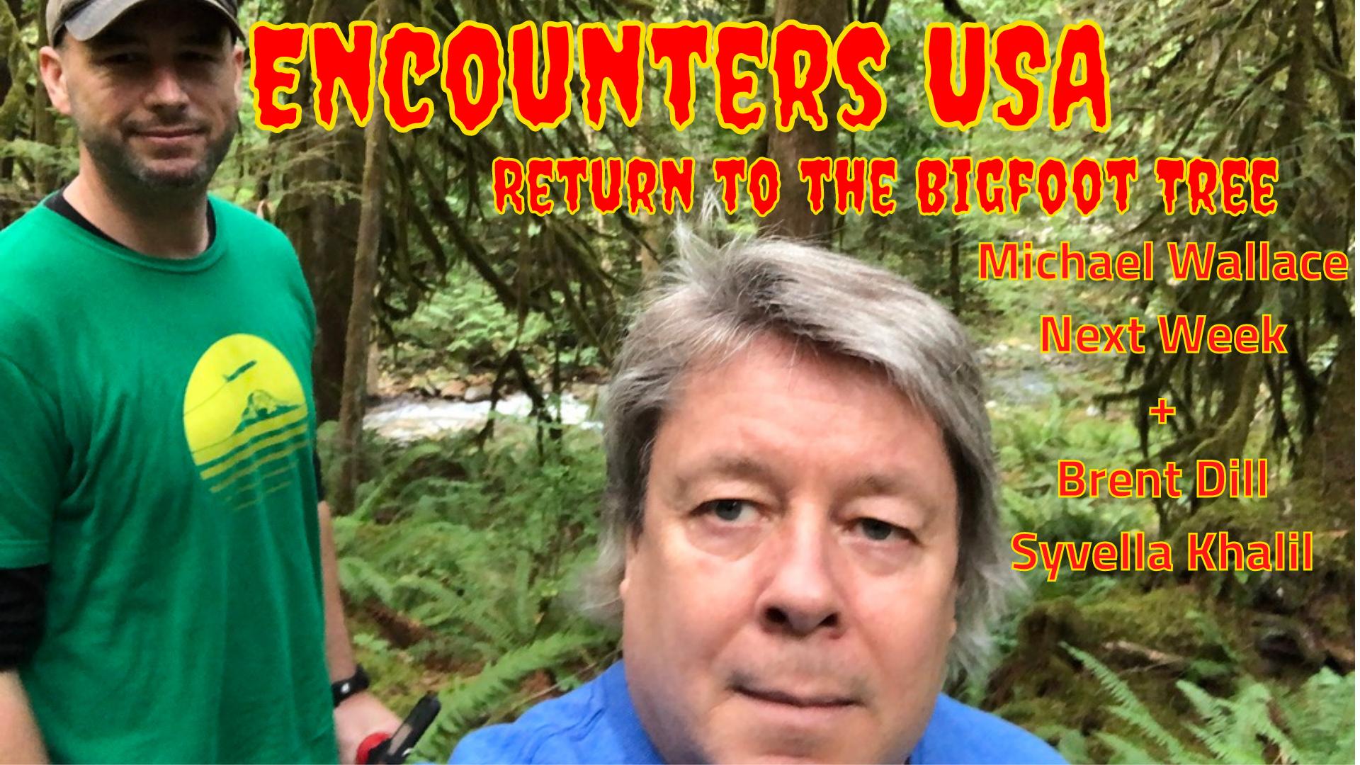Return to the Bigfoot Tree